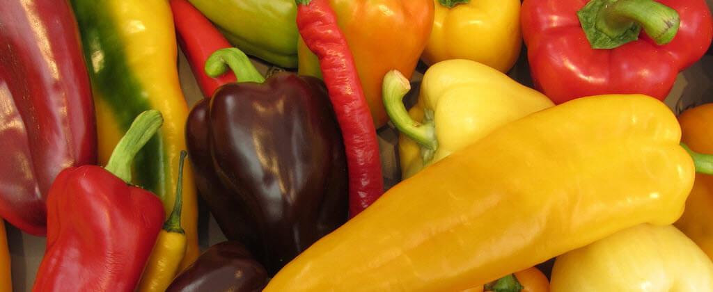 Různé druhy paprik