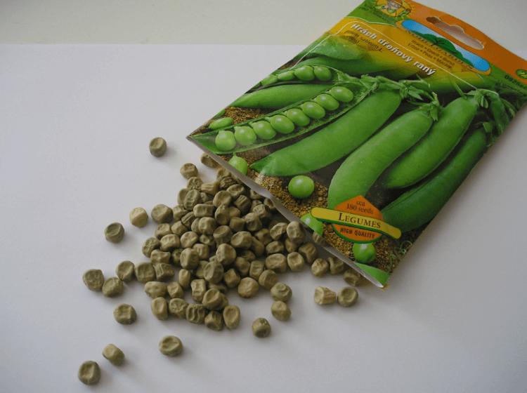 Semena hrášku dřeňového